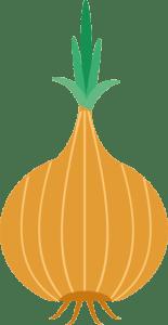 onion_løg