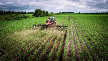 trv-interrow-weed-cultivator-cleaner-hacke-hackmaschine-radrenser-top-banner-web